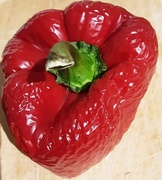 10th Jan 2021 - Part of a Red Bell Pepper.