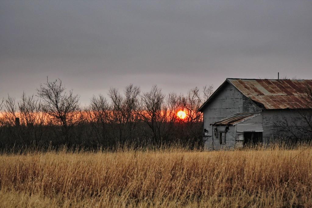 Sunrise by judyc57