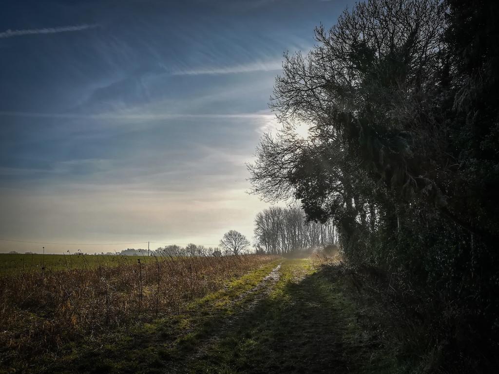 Winter vista by pasttheirprime