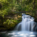 Whitehorse Falls, Umpqua River  by jyokota