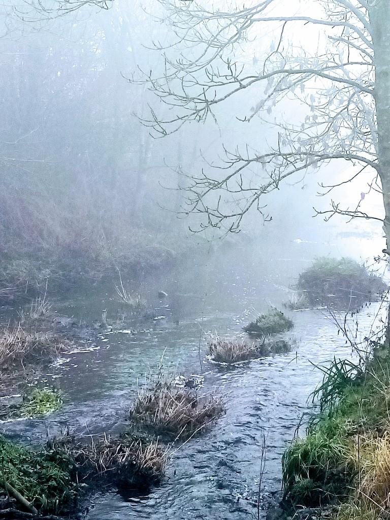 Mist on the stream by filsie65
