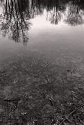 11th Jan 2021 - January Lake
