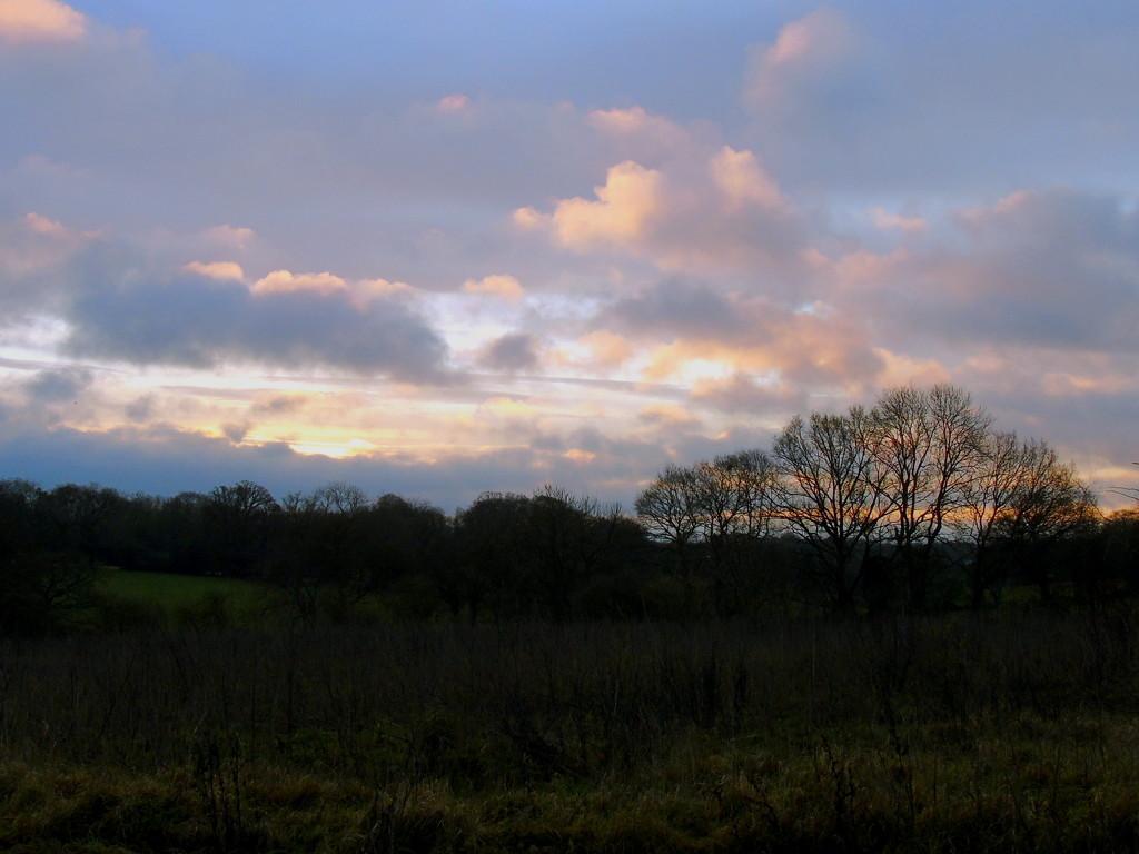 Morning Skys by bulldog