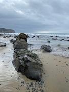 12th Dec 2020 - Rocky Beach