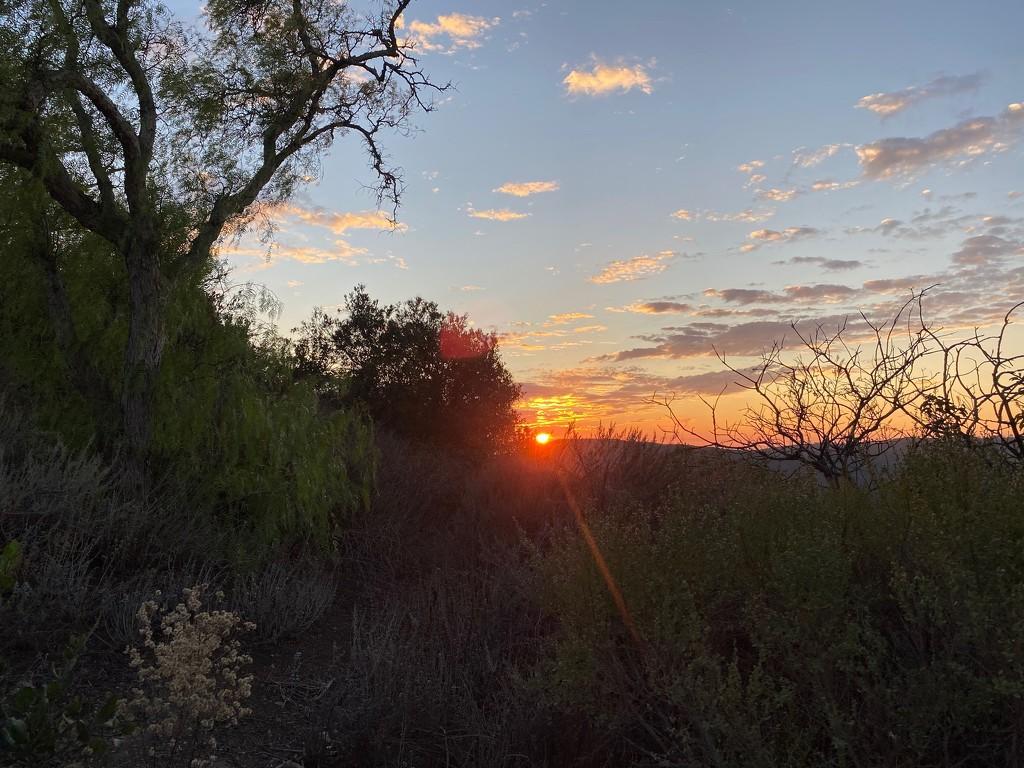 Summit Sunset by msfyste