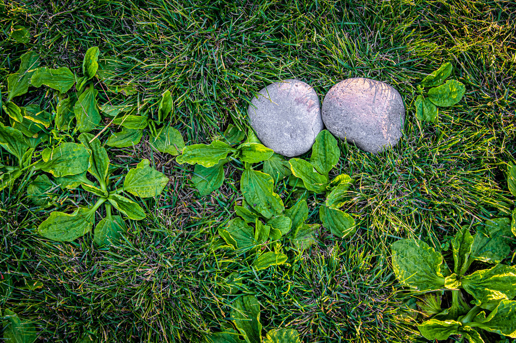 (Day 332) - Rock Solid Relationship by cjphoto