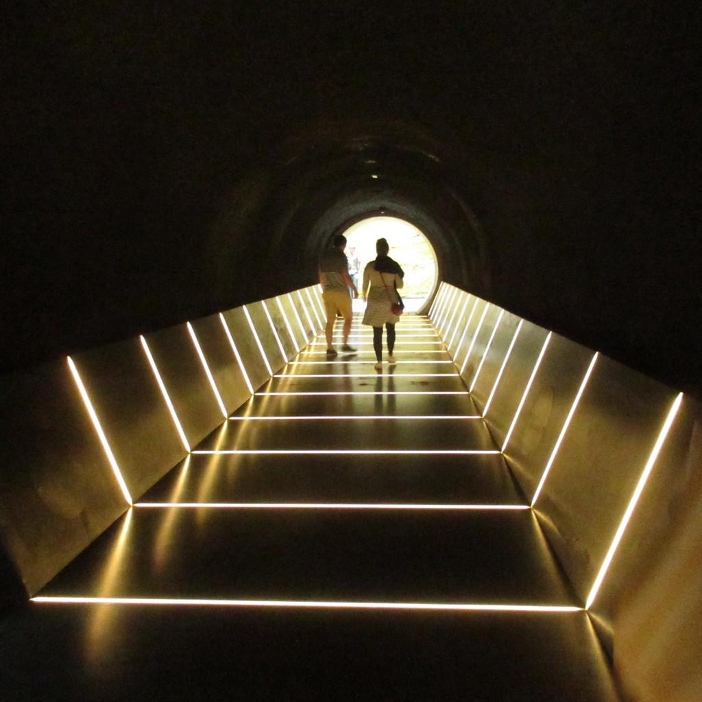 MONA - New amazing walkways  by robz