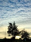 10th Jan 2021 - Clouds