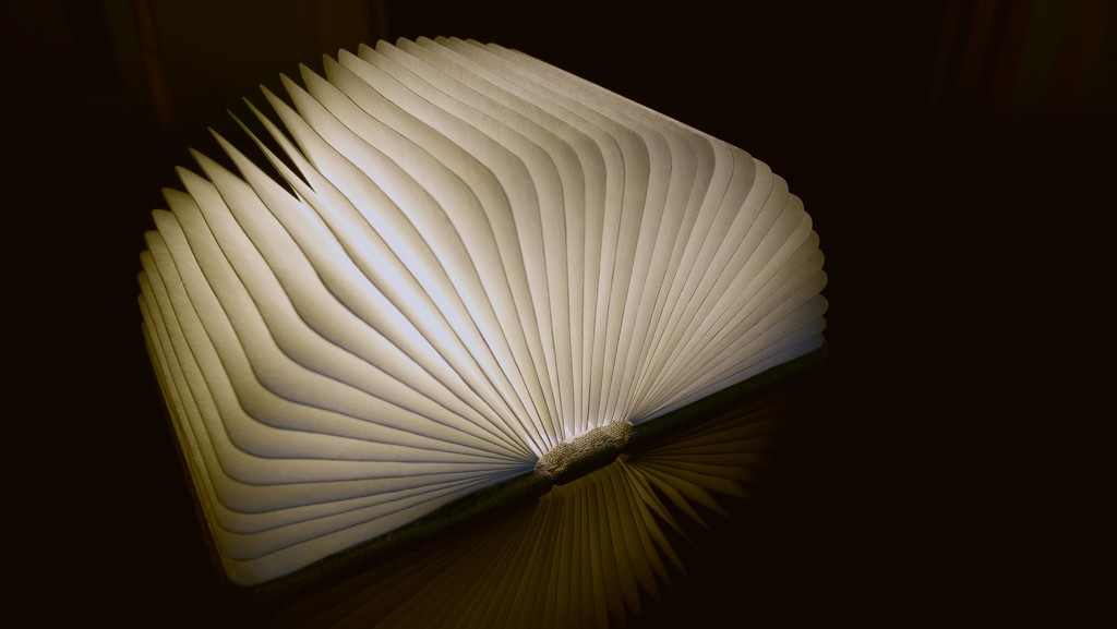Book lamp by moonbi