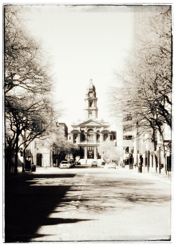 The Fort Worth Courthouse  by louannwarren