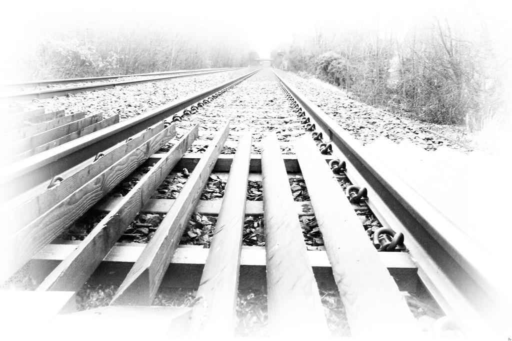 Lines by bybri