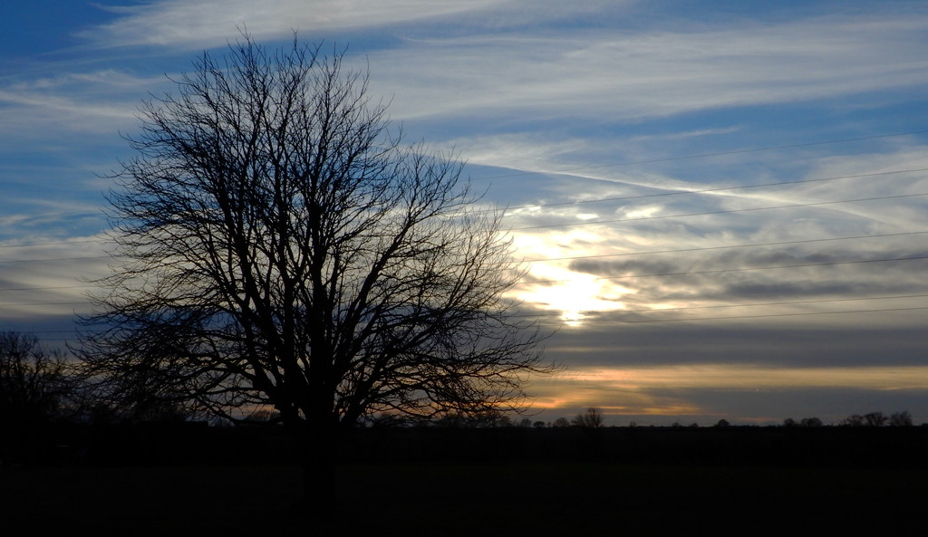 settting sun by busylady