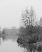 2nd Jan 2021 - River bw
