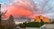 13th Jan 2021 - Pink cloud above my house.