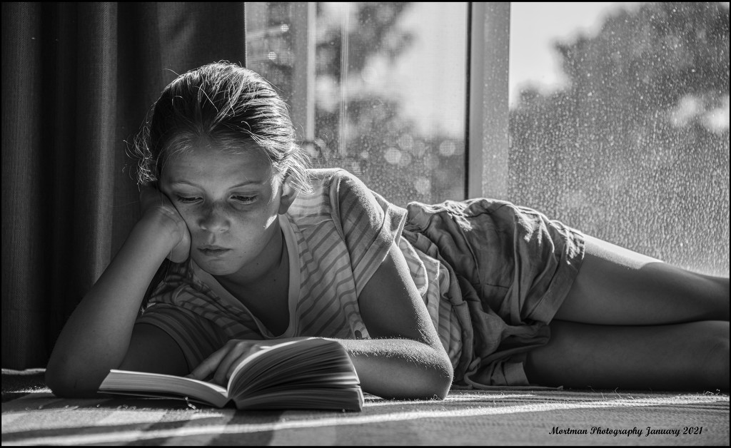 The Reader by mortman60