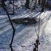 Frozen pond with air pump