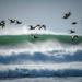 High Surf, No Rain