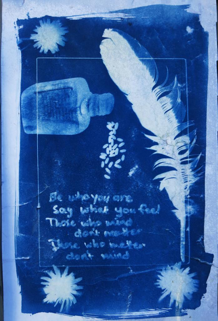 cyanotype 1 by kali66