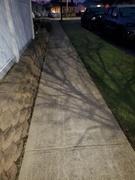 13th Jan 2021 - Sidewalk shadow