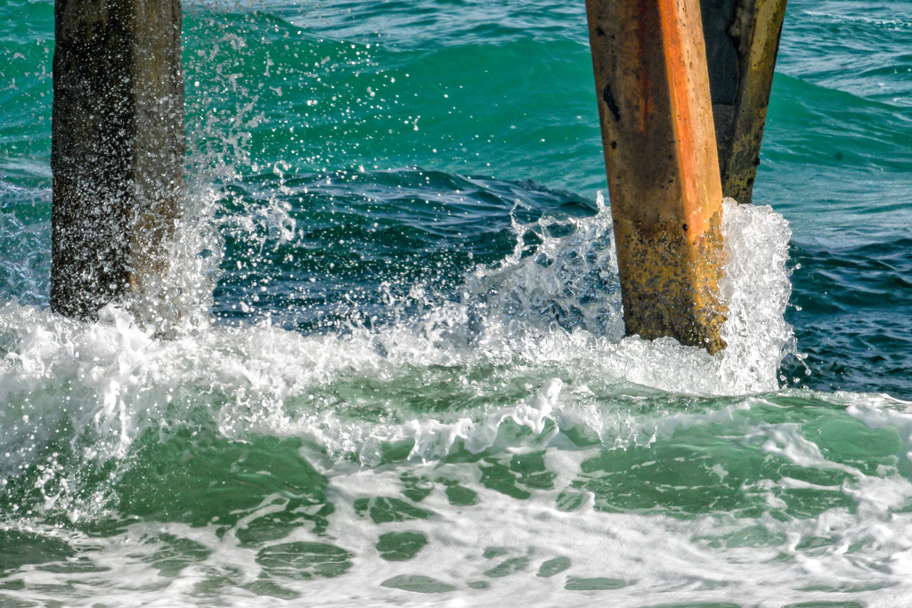 The Ocean in Motion by danette