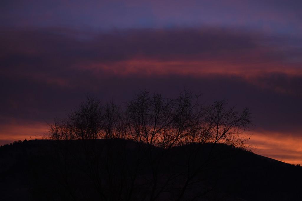 Break of Dawn by bjywamer