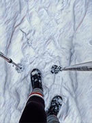 13th Jan 2021 - No need for Snowshoes today!