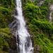 Waterfall in the Greenery