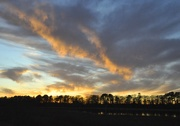 13th Jan 2021 - Trees & clouds    Sunset Series #4
