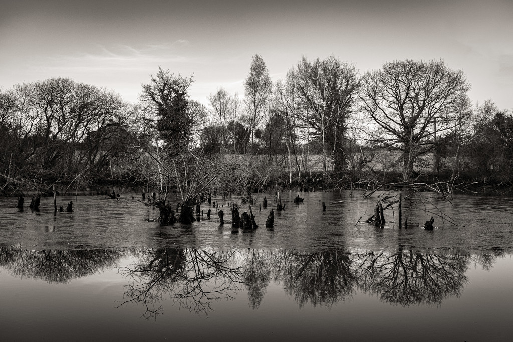 Flooded Dell by vignouse