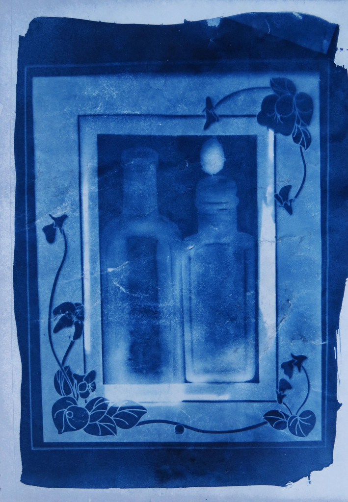 cyanotype 2  by kali66