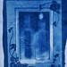 cyanotype 2