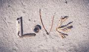 15th Jan 2021 - Love aroha amour its all the same