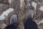 14th Jan 2021 - Glorious Mud