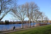 14th Jan 2021 - Church & Trees