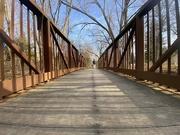 14th Jan 2021 - On the Bridge