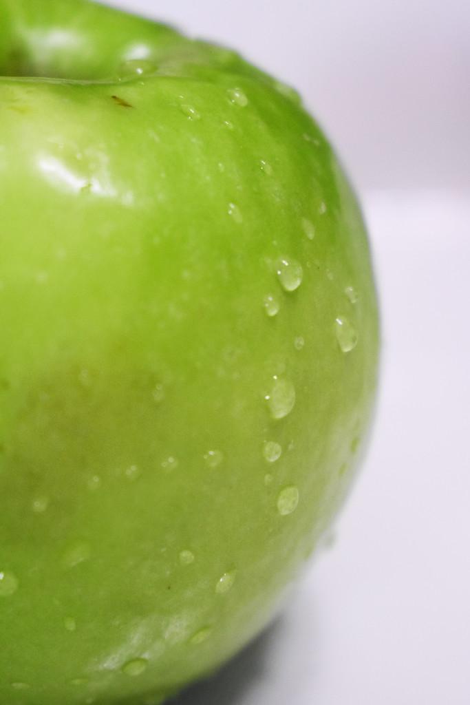 Granny Smith's apple by homeschoolmom