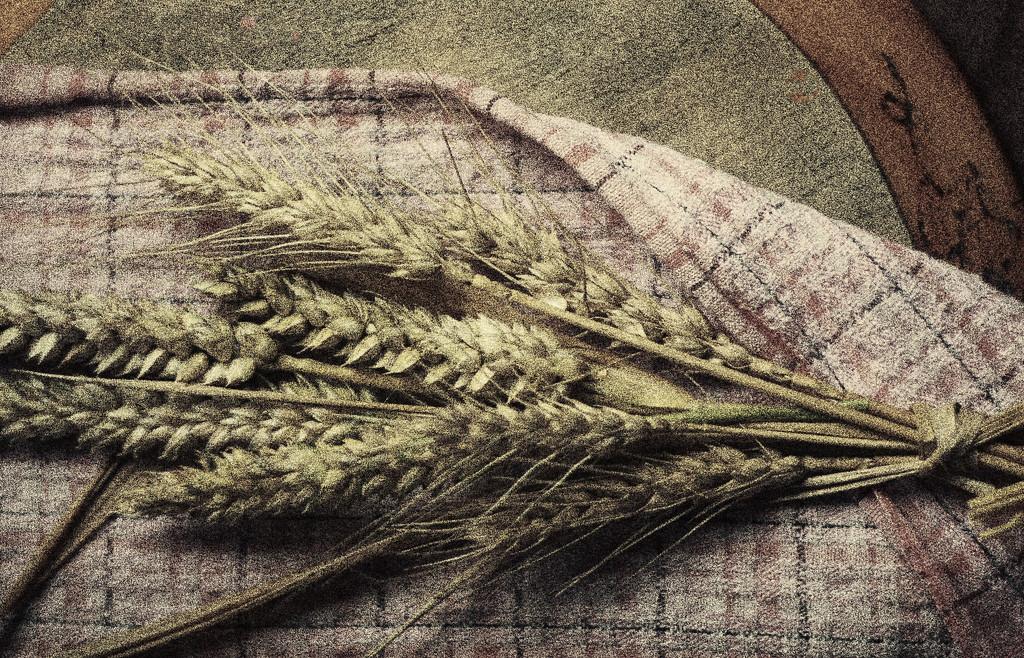 Grain  by kali66