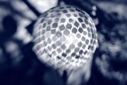 15th Jan 2021 - garden orb