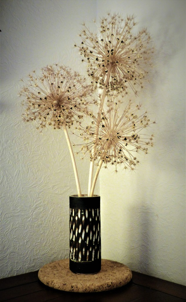 Simplicity . by beryl