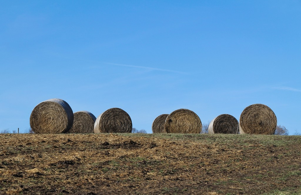 Hay bales up on the hill by mittens