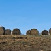 Hay bales up on the hill