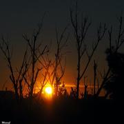 15th Jan 2021 - Sunrise