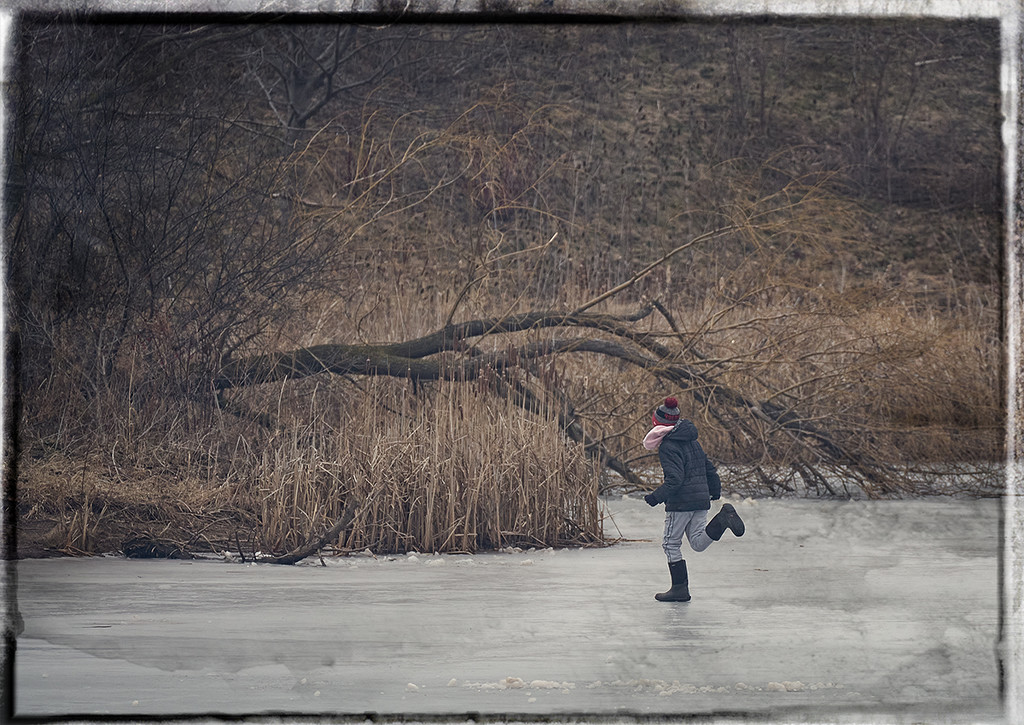 Running on Ice  by gardencat