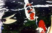16th Jan 2021 - Gone fishing