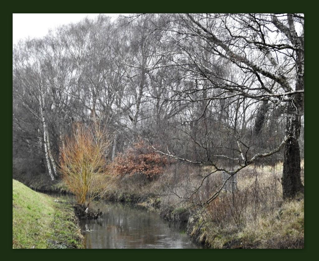 Winter - River Leen by oldjosh