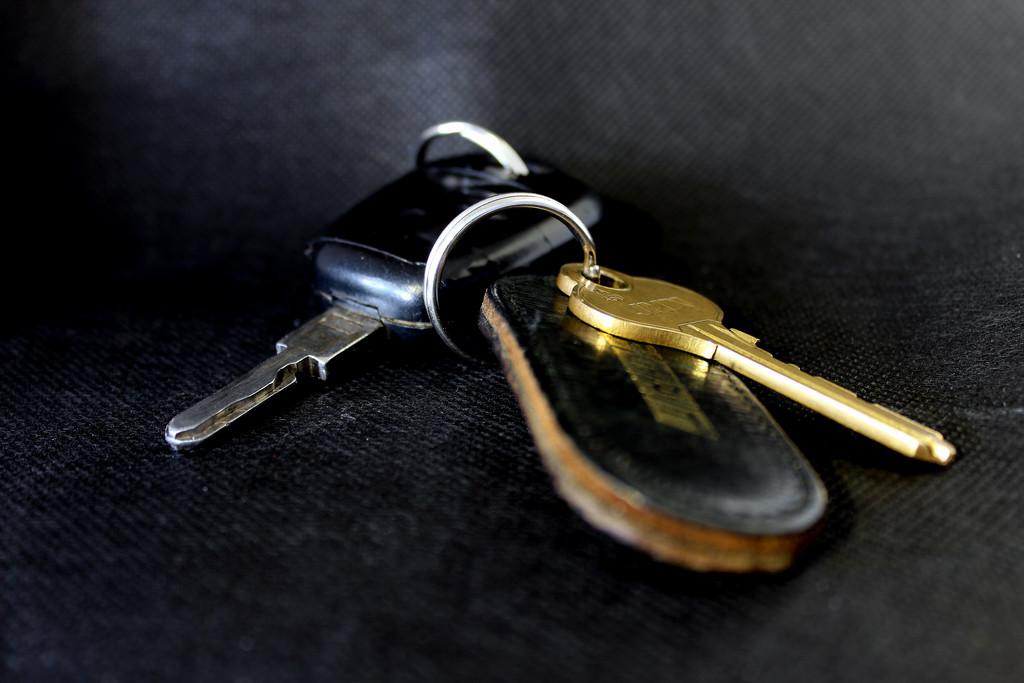 Jan 11th Keys by valpetersen
