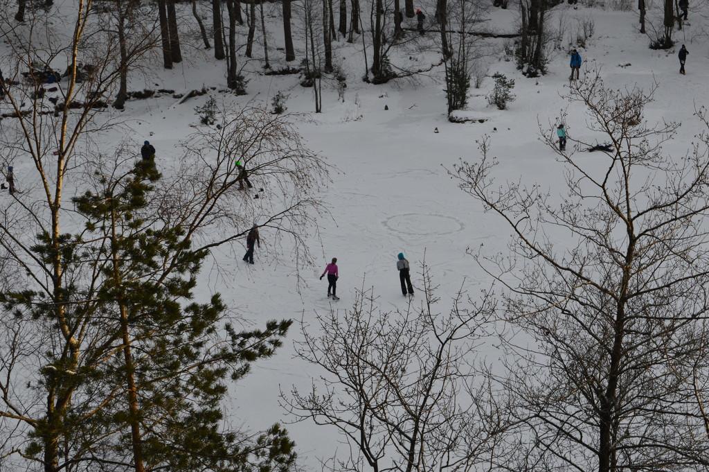 Finally ice-skating season by didi