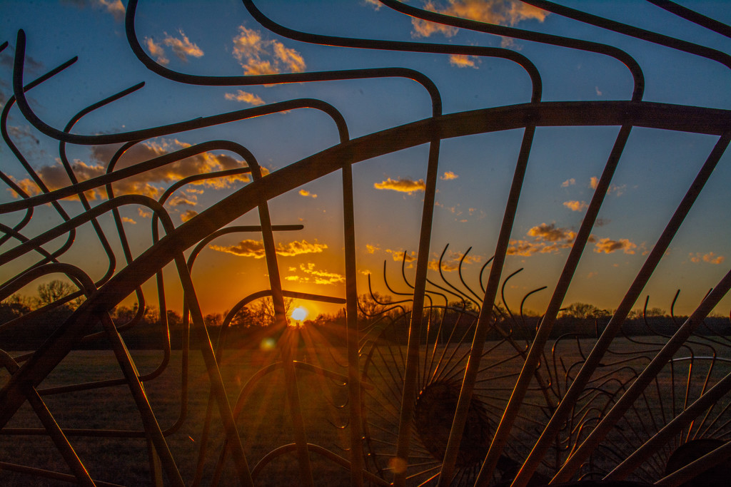 Sunset through the rake... by thewatersphotos