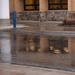 Rainy Day Reflections