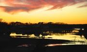 16th Jan 2021 - High tide - Sunset series #7